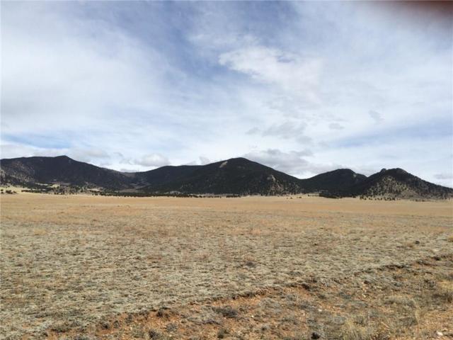 4189 Clear Creek Road, Hartsel, CO 80449 (MLS #S1000509) :: Resort Real Estate Experts