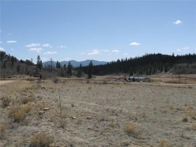 48 Rein, Jefferson, CO 80456 (MLS #S1004433) :: Resort Real Estate Experts