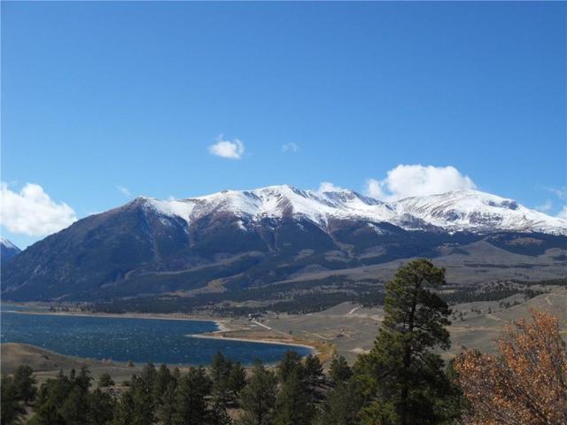 Otelia Otelia, Twin Lakes, CO 81251 (MLS #S1004437) :: Colorado Real Estate Summit County, LLC
