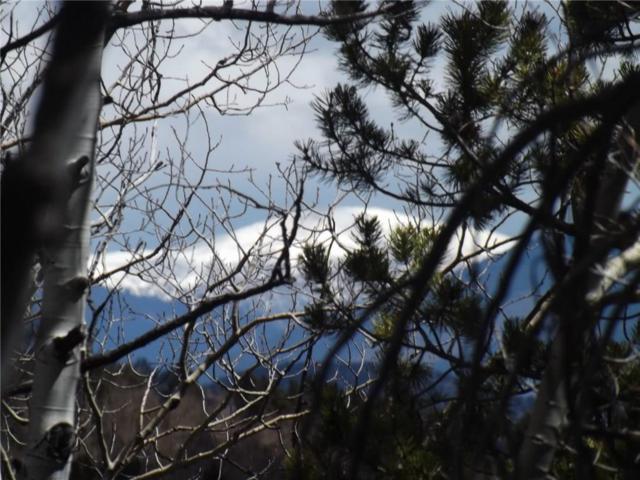 299 Beaver Ridge Road, Fairplay, CO 80440 (MLS #S1004570) :: Resort Real Estate Experts