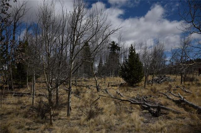 2941 Stagestop Road, Jefferson, CO 80456 (MLS #S1004728) :: Resort Real Estate Experts