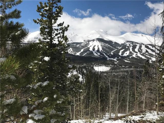 2185 Boreas Pass Road, Breckenridge, CO 80424 (MLS #S1004928) :: Colorado Real Estate Summit County, LLC