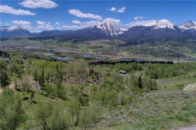 660 Lakeview Circle, Silverthorne, CO 80498 (MLS #S1005421) :: Colorado Real Estate Summit County, LLC
