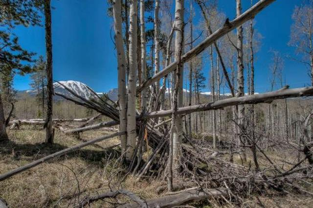 161 Angler Mountain Ranch Road, Silverthorne, CO 80498 (MLS #S1005527) :: CENTURY 21, The Smits Team