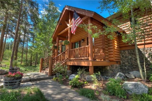 153 Dyer Trail, Breckenridge, CO 80424 (MLS #S1005572) :: CENTURY 21, The Smits Team