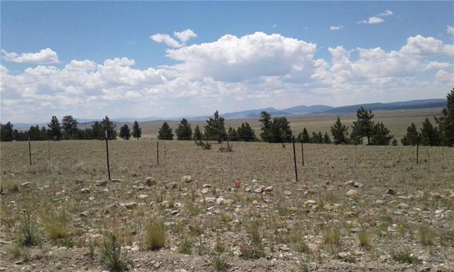 645 Rudisill Street, Fairplay, CO 80440 (MLS #S1005588) :: Colorado Real Estate Summit County, LLC