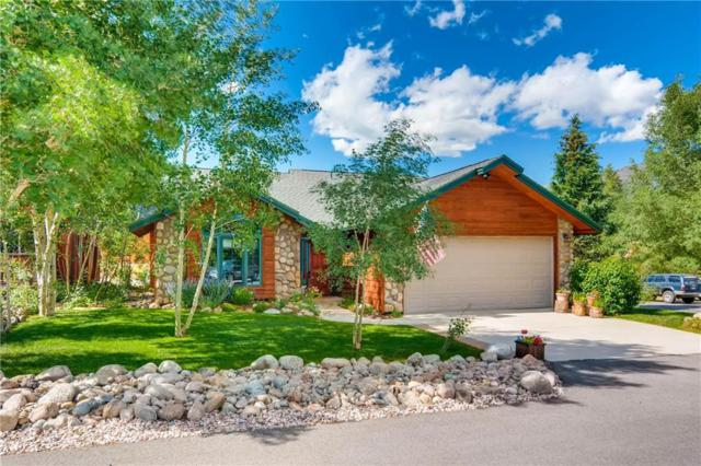 246 E Coyote Court, Silverthorne, CO 80498 (MLS #S1005627) :: CENTURY 21, The Smits Team