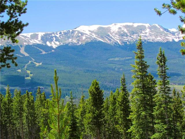 247 Green Jay Lane, Breckenridge, CO 80424 (MLS #S1005812) :: Resort Real Estate Experts