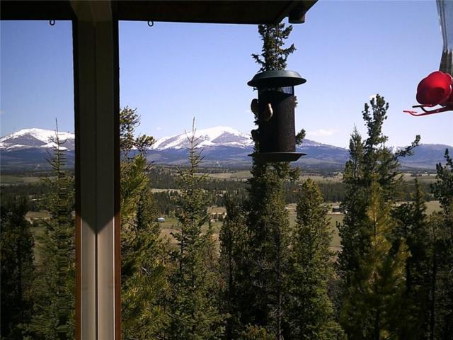 2093 High Creek Road, Fairplay, CO 80440 (MLS #S1006240) :: Resort Real Estate Experts