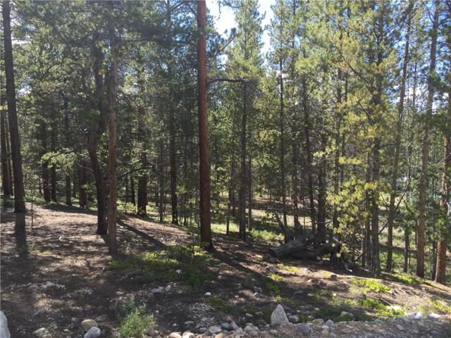 1811 Autumn Drive, Leadville, CO 80461 (MLS #S1006324) :: Resort Real Estate Experts