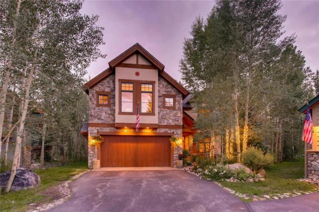 110 Silverbell Court, Frisco, CO 80443 (MLS #S1006326) :: The Smits Team Real Estate