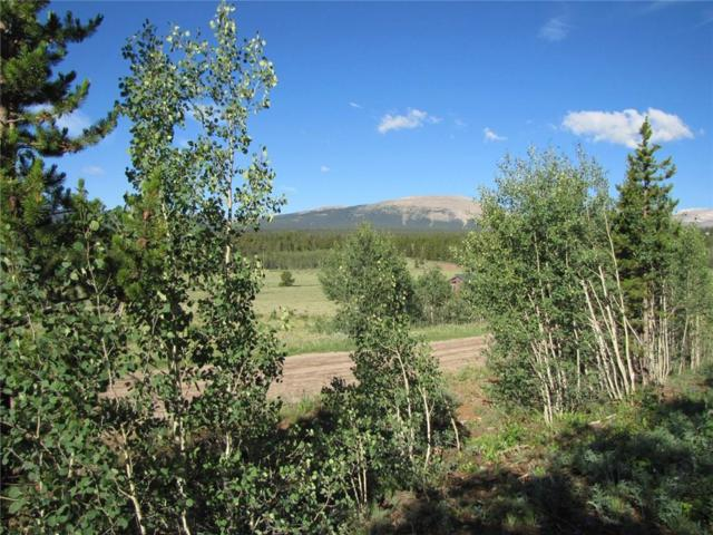 0 Foxtail Court, Fairplay, CO 80440 (MLS #S1006331) :: Resort Real Estate Experts