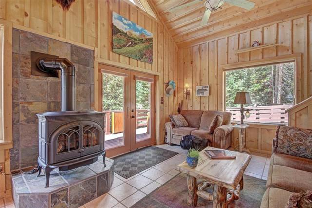 446 Ansley Avenue, Alma, CO 80420 (MLS #S1006378) :: The Smits Team Real Estate
