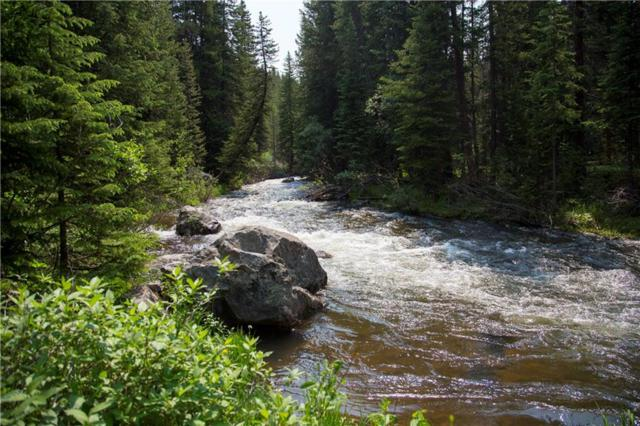 445 River Park Drive, Breckenridge, CO 80424 (MLS #S1006412) :: Colorado Real Estate Summit County, LLC