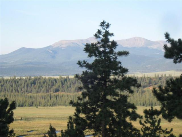 0 Bonell Drive, Fairplay, CO 80440 (MLS #S1006467) :: The Smits Team Real Estate