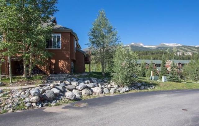 20 River Park Drive 20F, Breckenridge, CO 80424 (MLS #S1006492) :: The Smits Team Real Estate