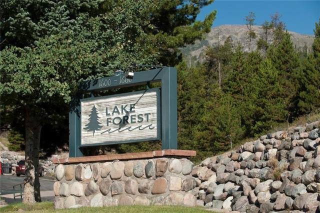 1660 Lakeview Terrace F204, Frisco, CO 80443 (MLS #S1006498) :: The Smits Team Real Estate
