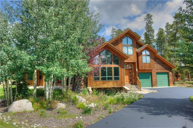 313 Red Hawk Circle, Silverthorne, CO 80498 (MLS #S1006649) :: Colorado Real Estate Summit County, LLC