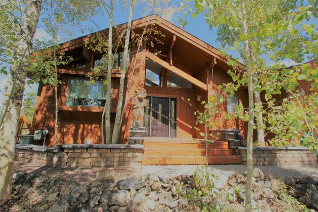 155 Snowberry Way, Dillon, CO 80435 (MLS #S1006834) :: The Smits Team Real Estate