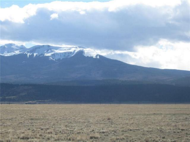 TBD Antero Drive, Fairplay, CO 80440 (MLS #S1006894) :: Resort Real Estate Experts