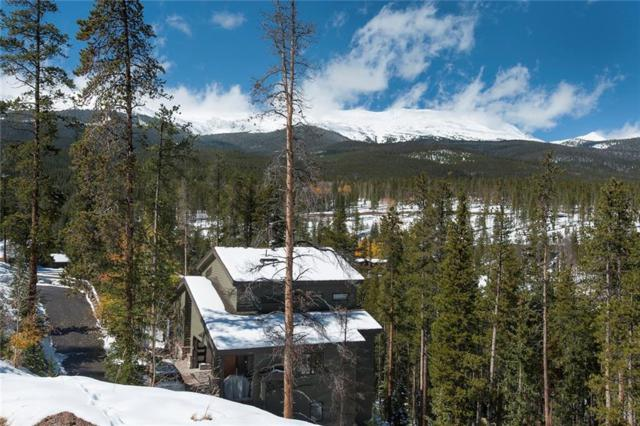 175 Protector Place, Breckenridge, CO 80424 (MLS #S1006952) :: The Smits Team Real Estate