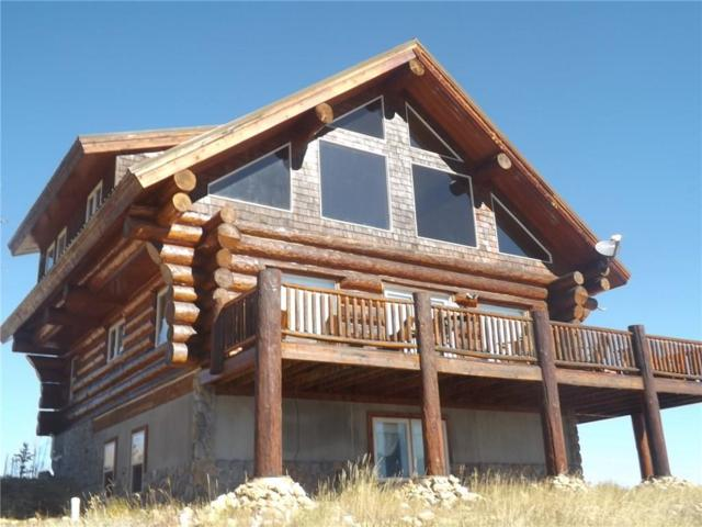 2947 High Creek Road, Fairplay, CO 80440 (MLS #S1006993) :: The Smits Team Real Estate