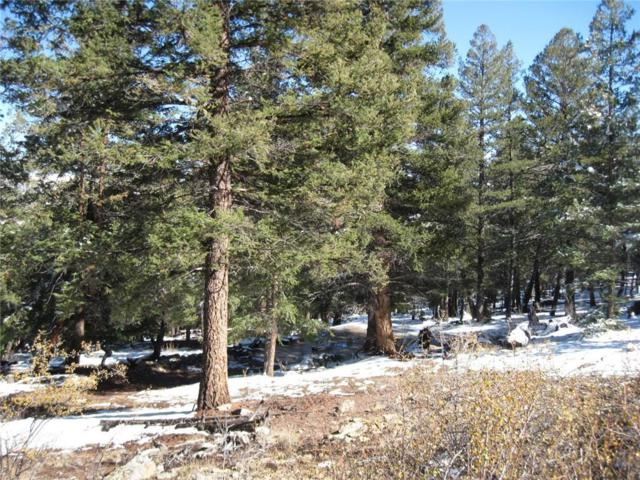 2468 Middle Fork, Fairplay, CO 80440 (MLS #S1007001) :: Resort Real Estate Experts
