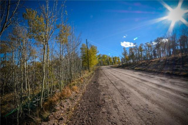 555 Little Baldy Circle, Fairplay, CO 80440 (MLS #S1007019) :: Colorado Real Estate Summit County, LLC