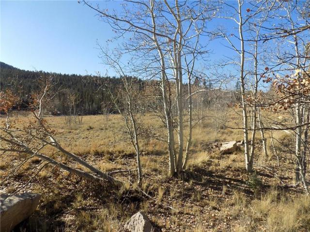 92 Old Squaw Road, Como, CO 80432 (MLS #S1007035) :: Resort Real Estate Experts