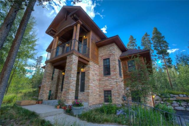 163 Solomons Lane, Silverthorne, CO 80498 (MLS #S1007067) :: The Smits Team Real Estate