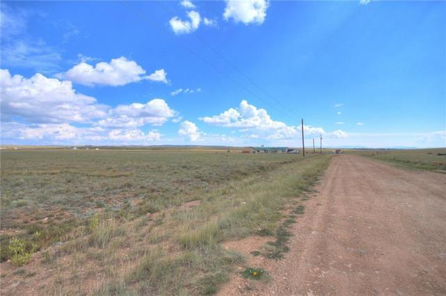 171 Black Knat Road, Fairplay, CO 80440 (MLS #S1007083) :: The Smits Team Real Estate