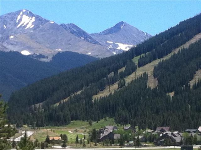 82 Wheeler Circle #217, Copper Mountain, CO 80443 (MLS #S1007222) :: Colorado Real Estate Summit County, LLC