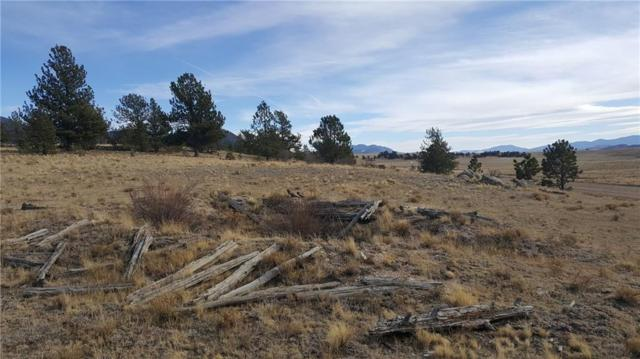 415 Olympic Court, Hartsel, CO 80449 (MLS #S1007235) :: Colorado Real Estate Summit County, LLC