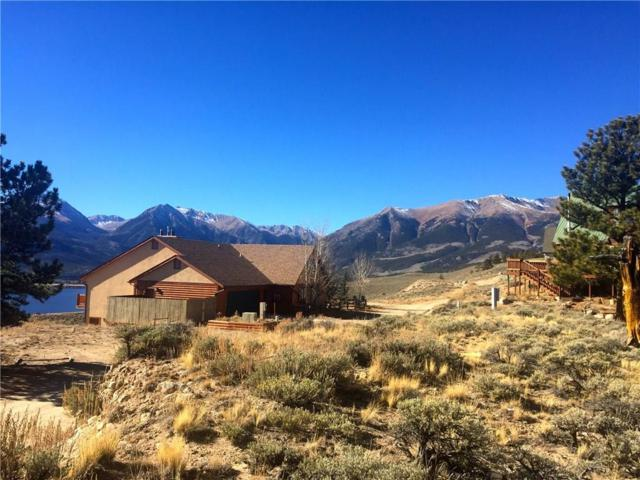 389 Twin Peaks, Leadville, CO 80461 (MLS #S1007244) :: Colorado Real Estate Summit County, LLC
