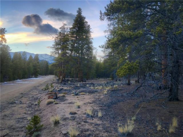 379 Aspen Drive, Twin Lakes, CO 81251 (MLS #S1007278) :: Resort Real Estate Experts
