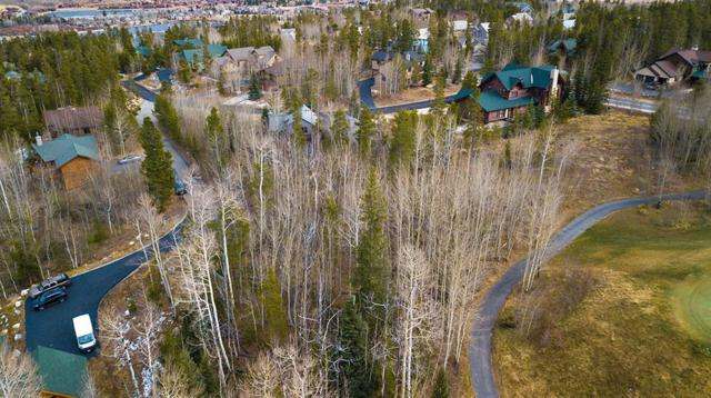 388 Black Hawk Circle, Silverthorne, CO 80498 (MLS #S1007282) :: The Smits Team Real Estate