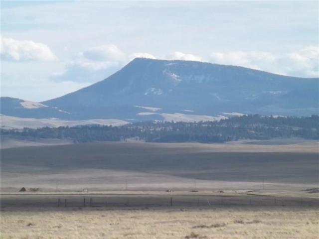 0 Antero Drive, Hartsel, CO 80449 (MLS #S1007292) :: Resort Real Estate Experts