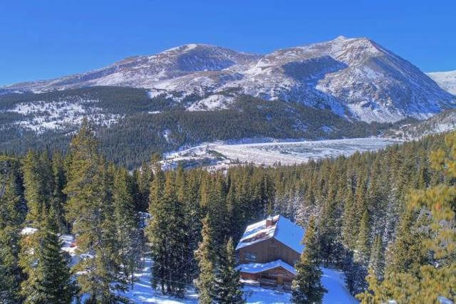 389 Lake View Drive, Alma, CO 80420 (MLS #S1007359) :: One Premier Properties Limited