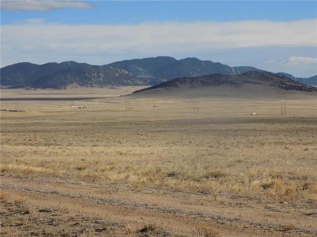 4189 Larimer Road, Hartsel, CO 80449 (MLS #S1007396) :: Colorado Real Estate Summit County, LLC