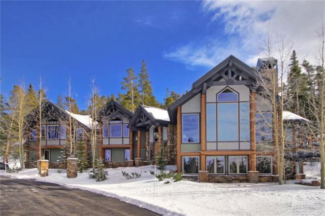 264 Little Sallie Barber Trail, Breckenridge, CO 80424 (MLS #S1007428) :: Colorado Real Estate Summit County, LLC