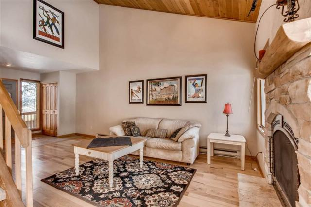 141 North Side Circle, Silverthorne, CO 80498 (MLS #S1007501) :: Colorado Real Estate Summit County, LLC