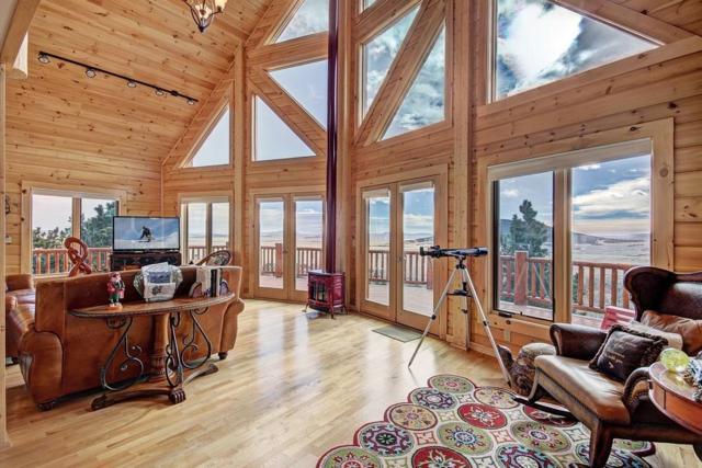 1092 Sheep Ridge Road, Fairplay, CO 80440 (MLS #S1007513) :: Resort Real Estate Experts