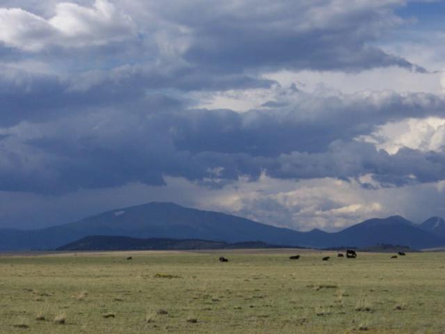 TBD Salt Ranch Trail, Hartsel, CO 80449 (MLS #S1007515) :: Colorado Real Estate Summit County, LLC