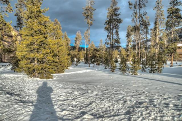 421 Elk Circle Circle, Keystone, CO 80435 (MLS #S1007601) :: Resort Real Estate Experts