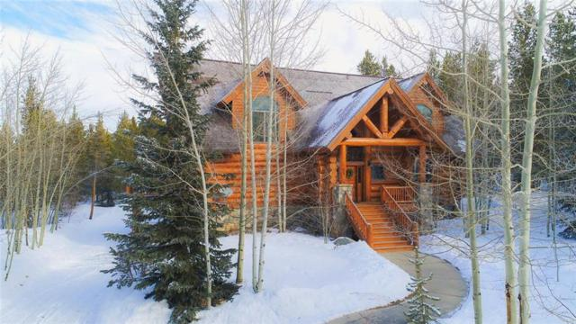 51 Elk Horn Lane, Breckenridge, CO 80424 (MLS #S1007617) :: Resort Real Estate Experts