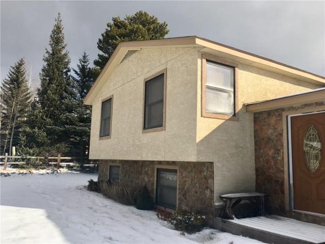 294 Big Elk Road, Dillon, CO 80435 (MLS #S1007663) :: Resort Real Estate Experts