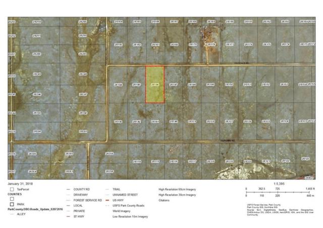 1186 Hinsdale Road, Hartsel, CO 80440 (MLS #S1007785) :: Resort Real Estate Experts