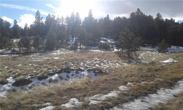 144 Summit Road, Hartsel, CO 80449 (MLS #S1007831) :: Resort Real Estate Experts