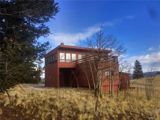 491 Shoshone Drive, Como, CO 80432 (MLS #S1007944) :: Resort Real Estate Experts