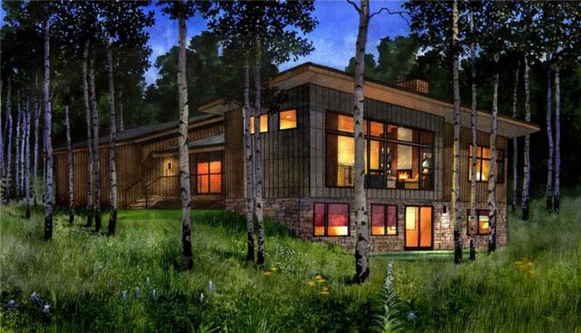 127 Maryland Creek Road, Silverthorne, CO 80498 (MLS #S1007976) :: Resort Real Estate Experts